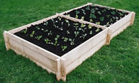 Vegetable Beds & Bins